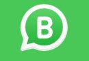 WhatsApp para o seu negócio, com telefone fixo e na tela do computador